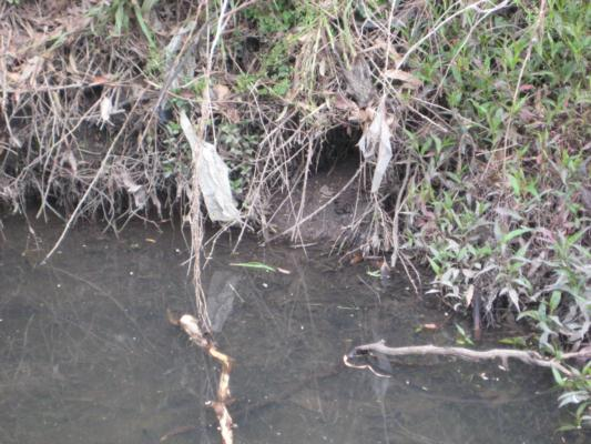 Photo of the hole in the bank at YDI 838