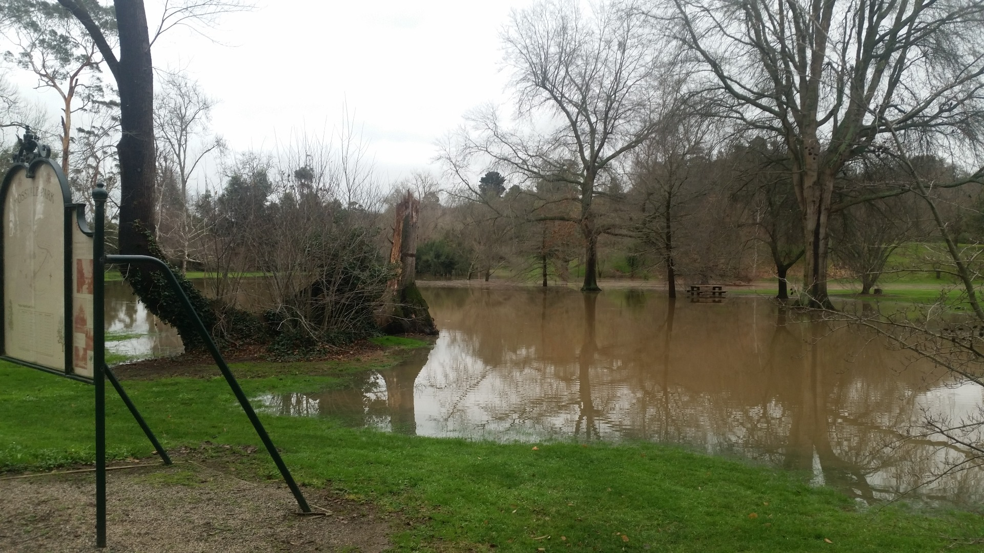 Flood waters/filling of the wetland area that has remained post previous floodings