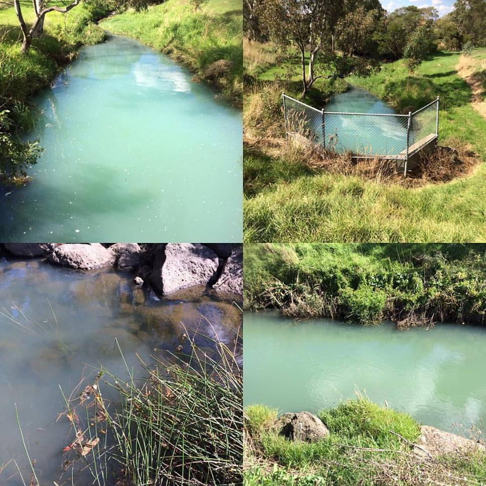 Later this day at around 2pm there was a report of bluish, smelly water emerging from a stormwater drain near Kingsbury Bowls Club in Reservoir. It was reported to the EPA and photos were put up on Friends of Darebin Creek Facebook site.