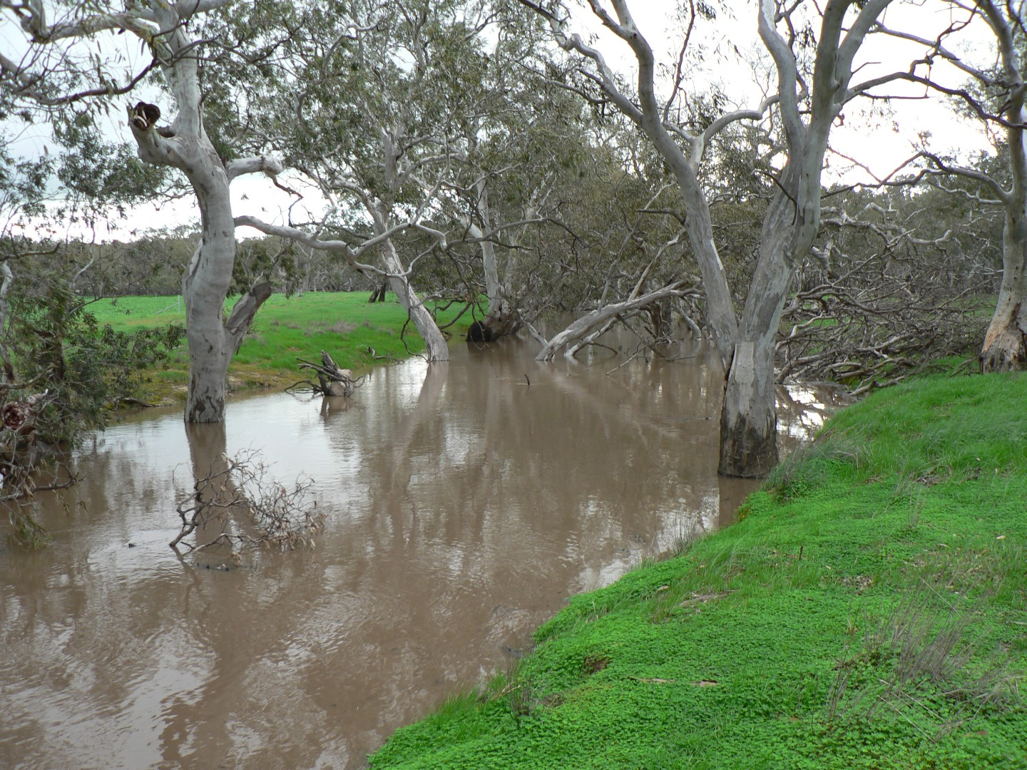 Avon River Photo's show the current flow