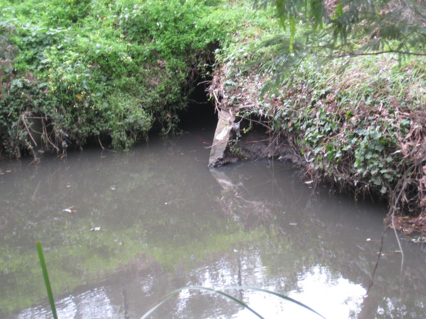 soil erosion to the right of the drain