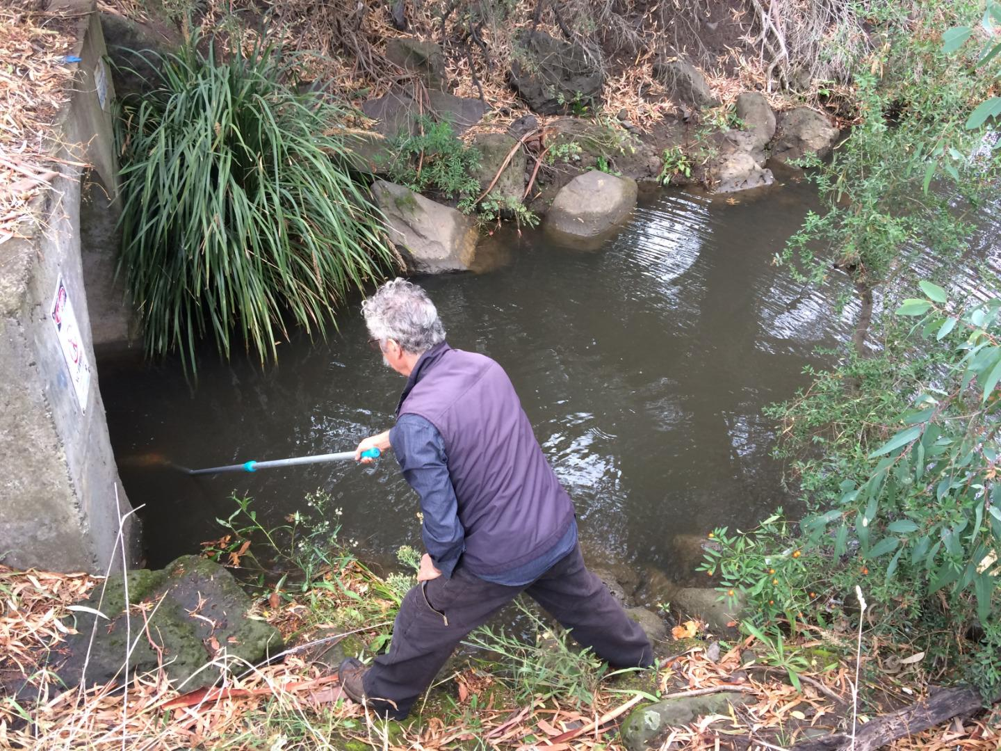 Sample taking from drain into Darebin Creek downstream from Murry Road Bridge
