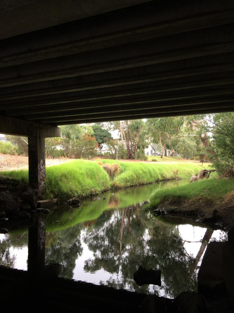 creek view upstream from under bridge (to water sample location)