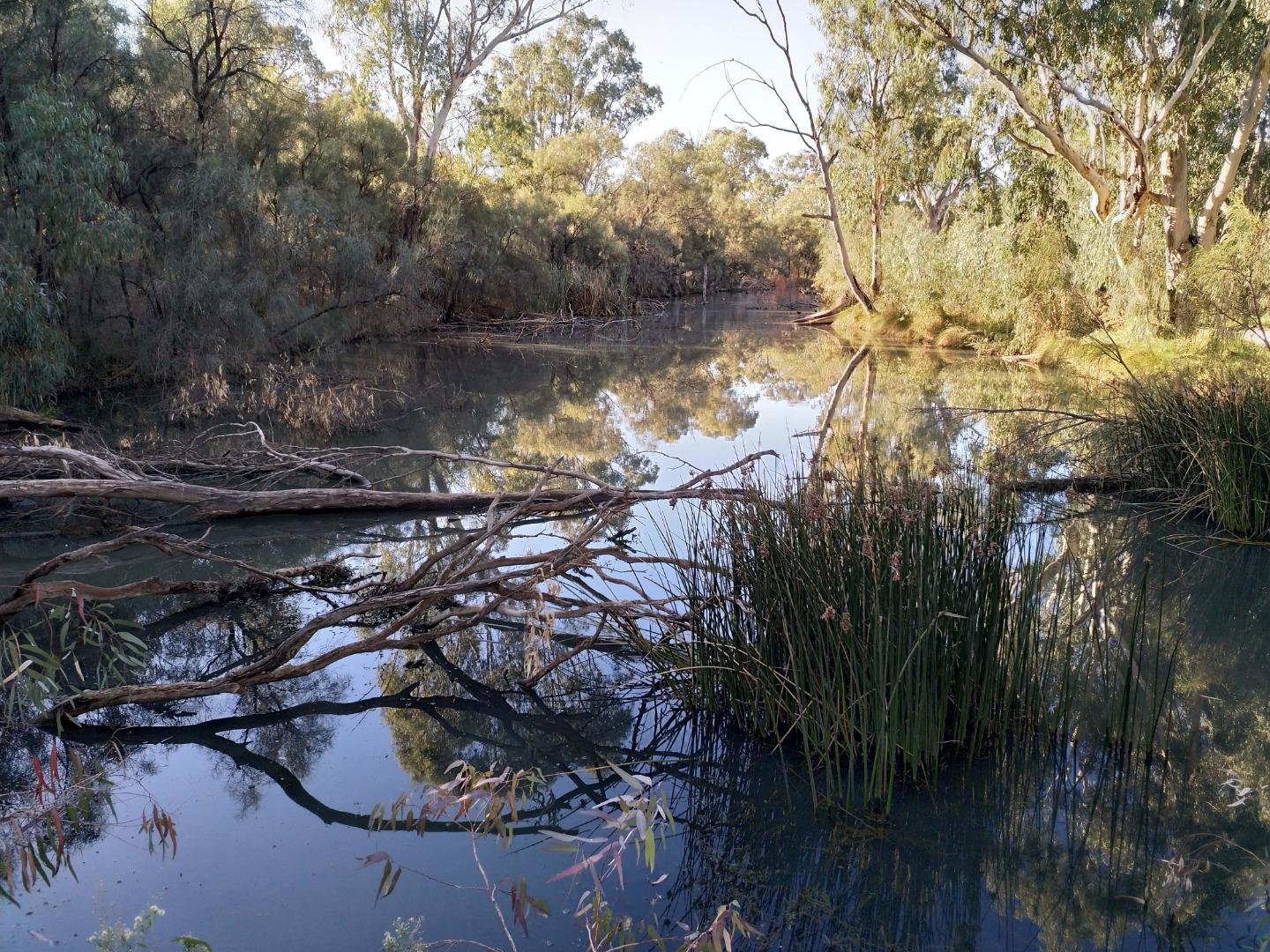 Sandilong creek, Mildura