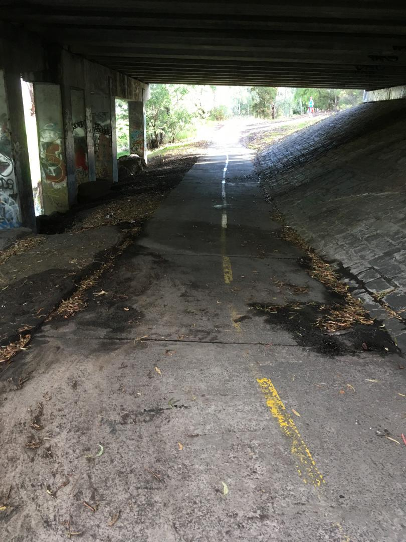 mud trail after fairly heavy recent rainfall under the Murray Rd/Southern Rd bridge