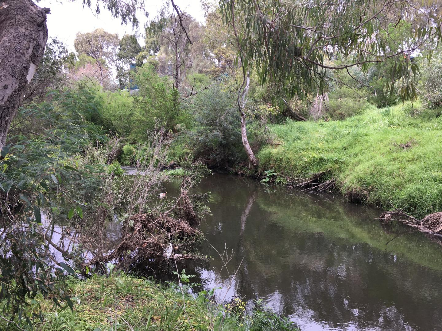 creek at point drain meetingpoint