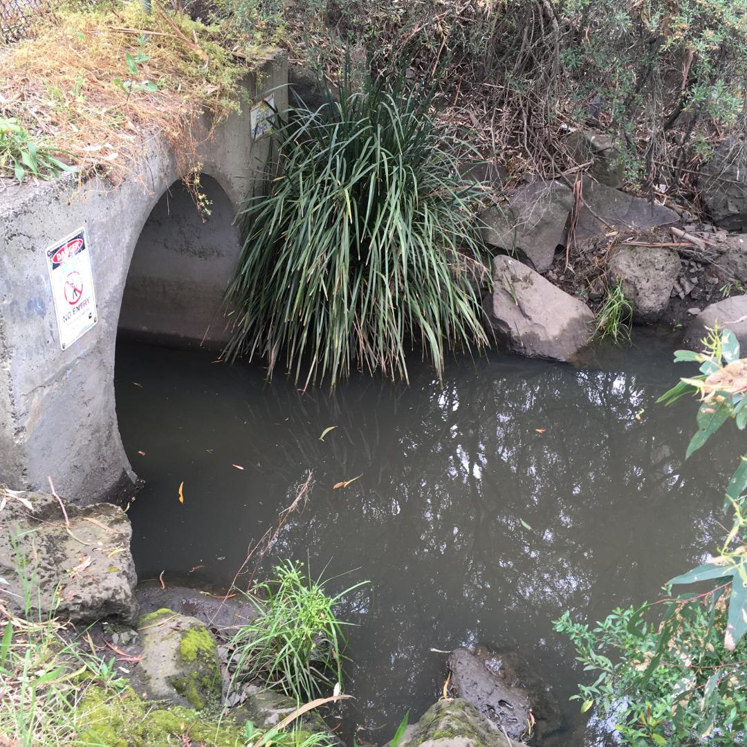 water sample site