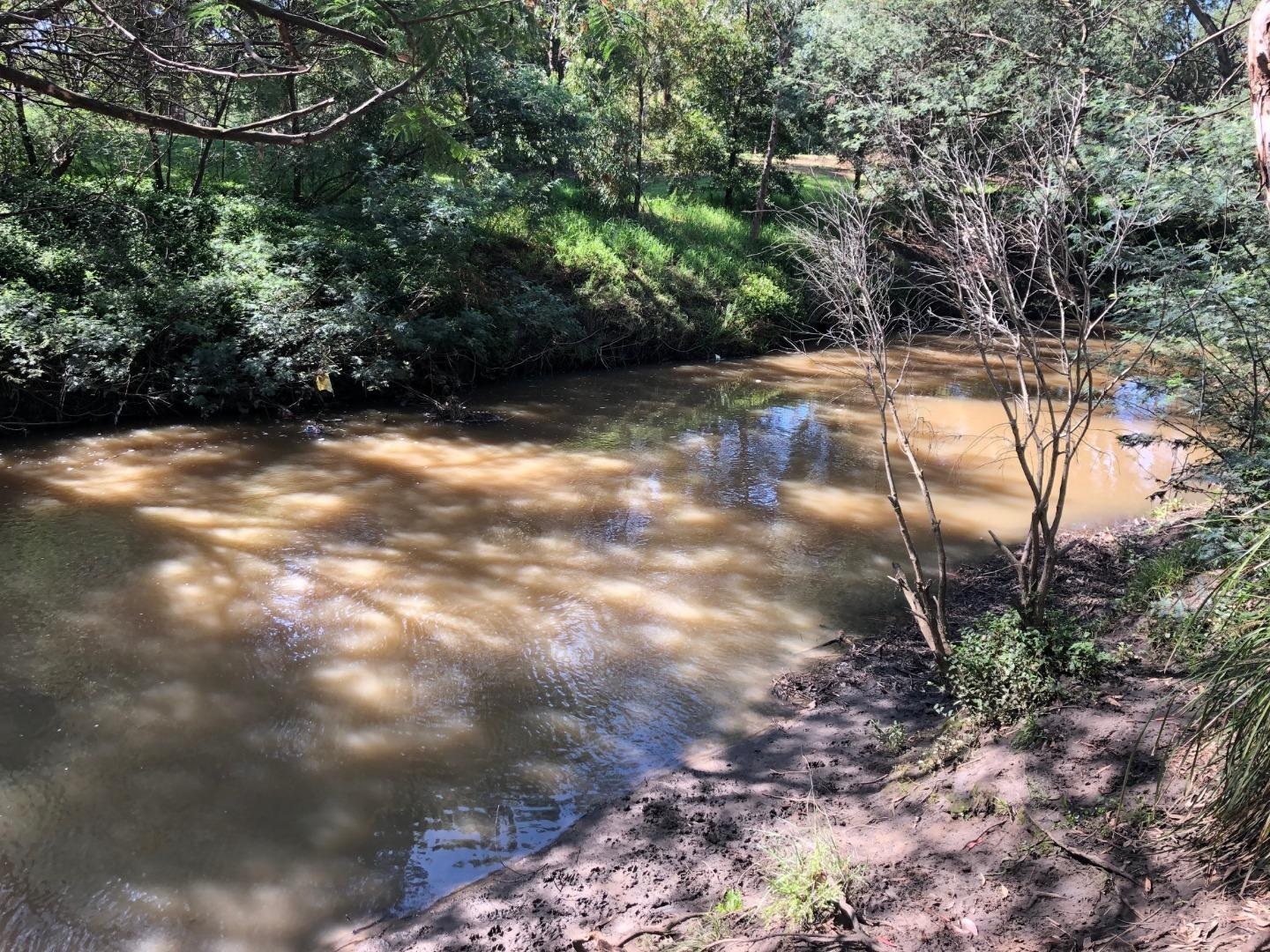 Colour of the creek after this week's dust storm