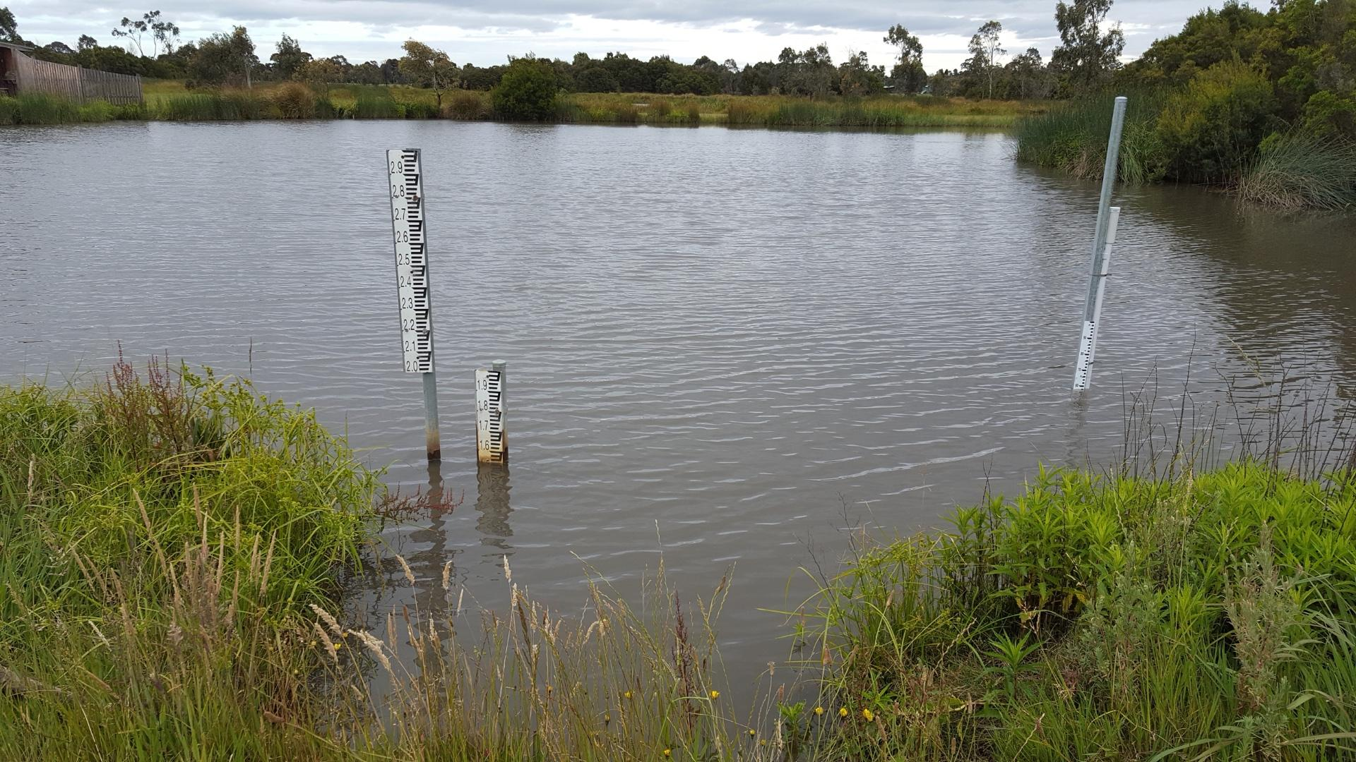 Old and new depth markers in the wetland - 1.55 on one, 58 on the other!