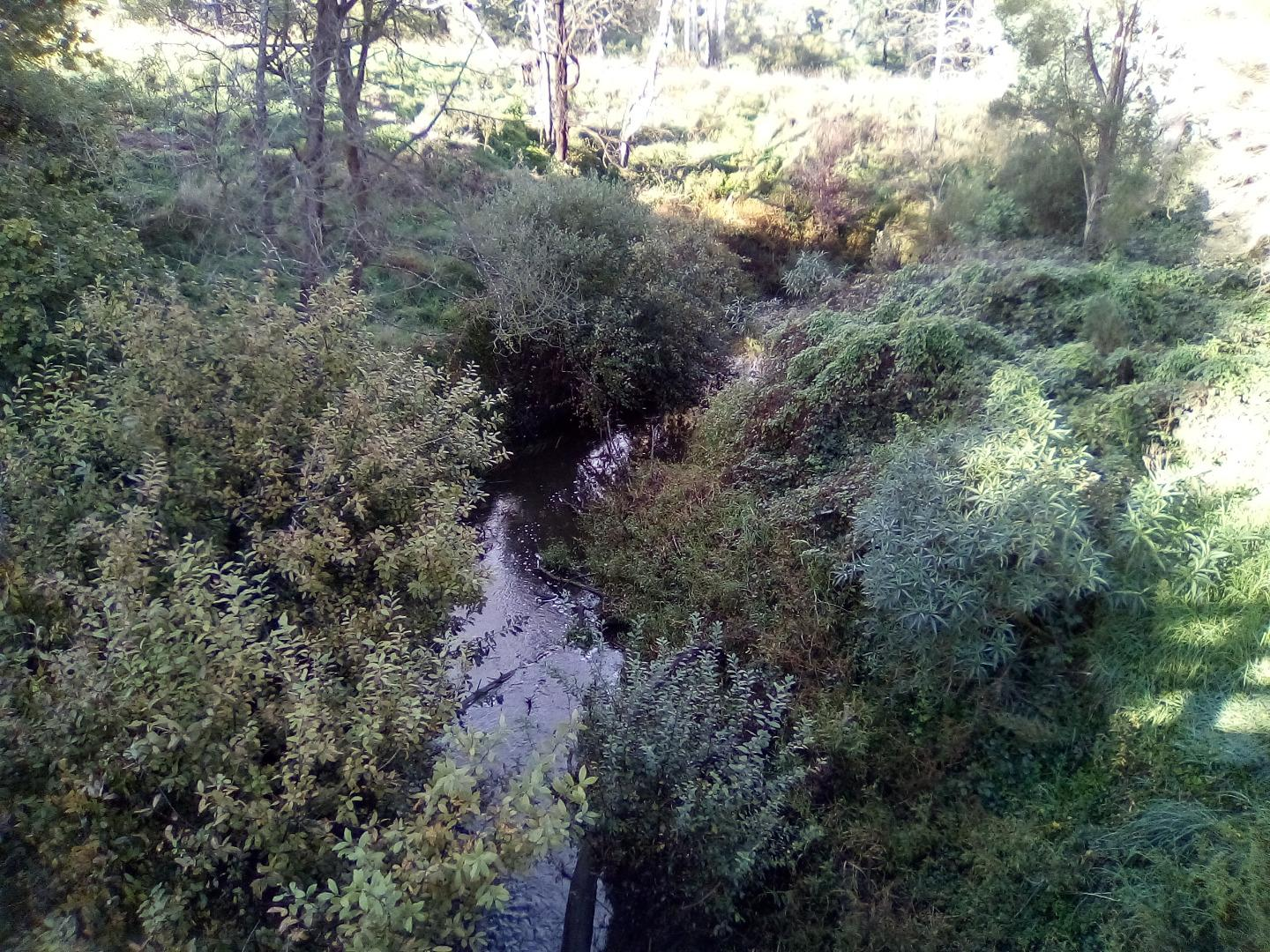 Looking south from bridge